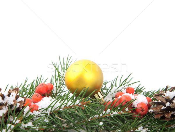 Karácsony váz zöld bogyó izolált fehér Stock fotó © bloodua