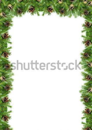 Natal quadro verde isolado branco fundo Foto stock © bloodua