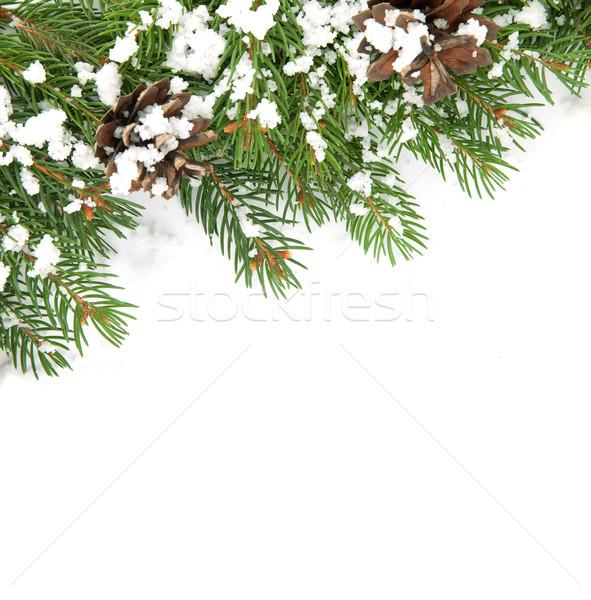 Natal quadro neve isolado branco verde Foto stock © bloodua