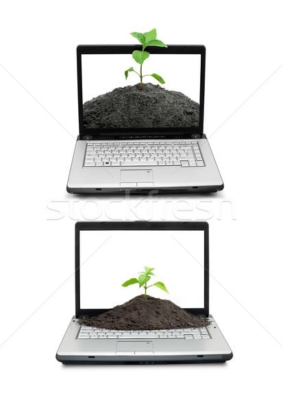 Foto stock: Abrir · laptop · teclado · tela · isolado