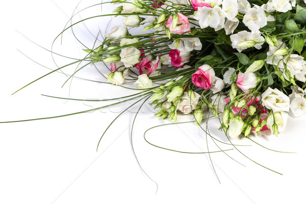 spring flowers background on white background Stock photo © bloodua