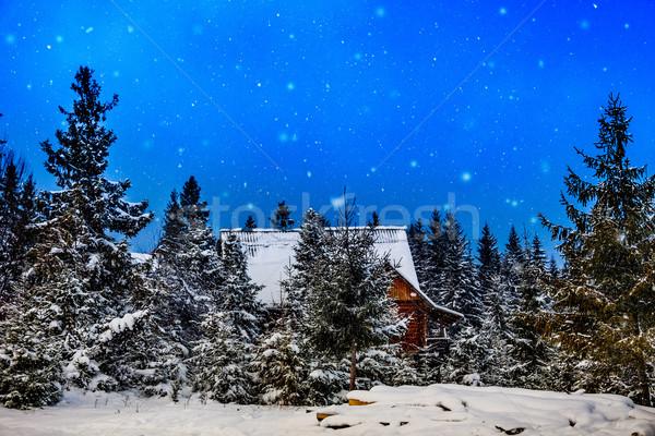 горные дома зима изморозь снега покрытый Сток-фото © bloodua