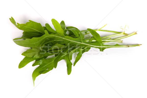 Arugula/rucola  fresh heap leaf on white Stock photo © bloodua