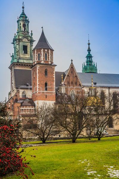 Polska katedry kompleks zamek niebo Zdjęcia stock © bloodua