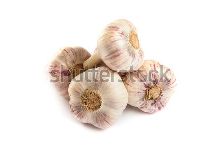 Group of garlics . A heads of garlics isolated Stock photo © bloodua