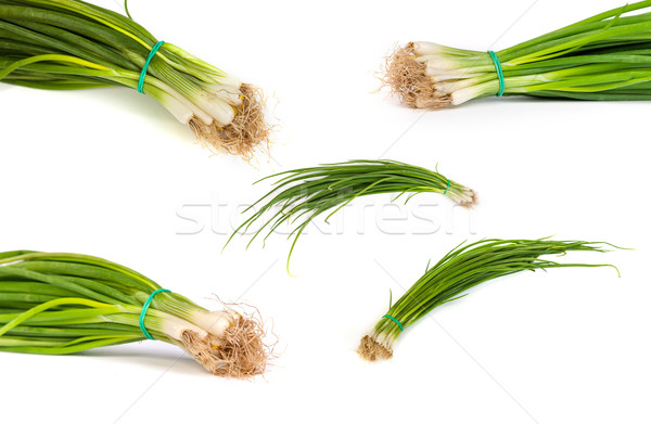 set of Fresh scallions isolated on white Stock photo © bloodua