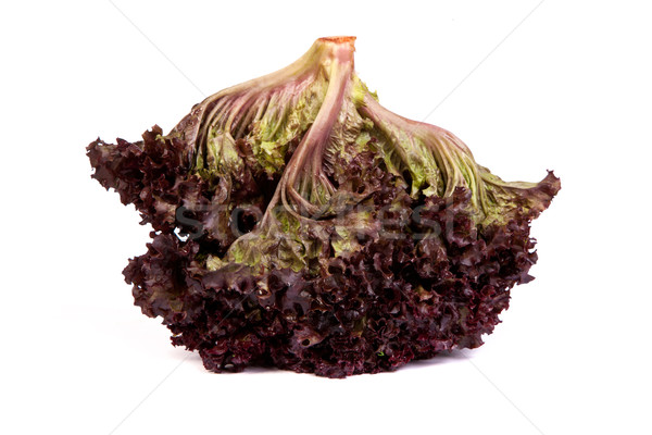 Fresh red Lettuce isolated on white Stock photo © bloodua