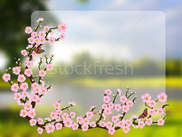 Stock fotó: Távolkeleti · stílus · festmény · cseresznyevirág · tavasz · vektor