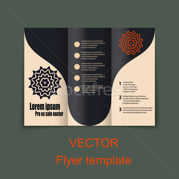 Vector Brochure Layout Design Template Stock photo © blotty