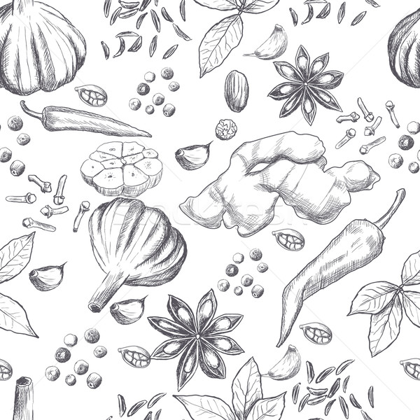 手描き シームレス セット オーガニック スパイス 食品 ストックフォト © blotty