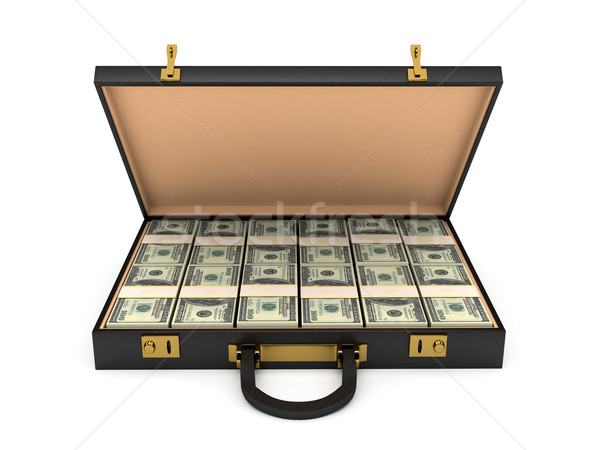 3d open case with money Stock photo © blotty