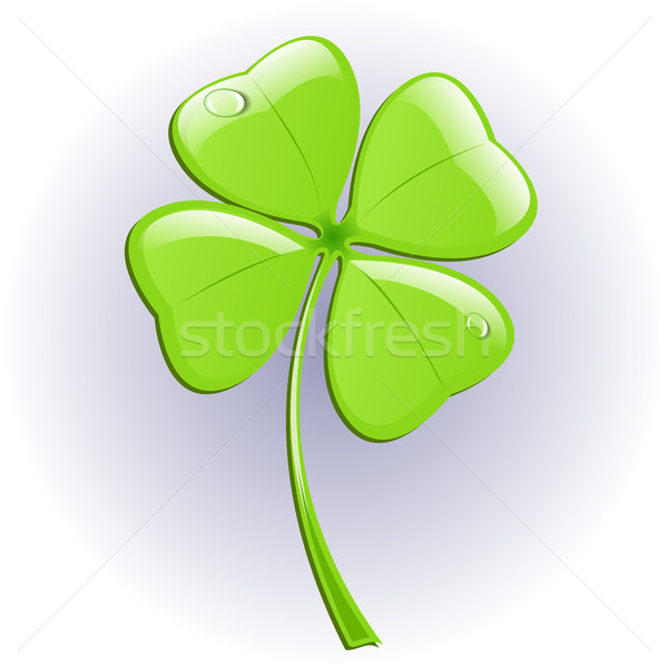 Four leaf clover. Vector illustration. Stock photo © blotty
