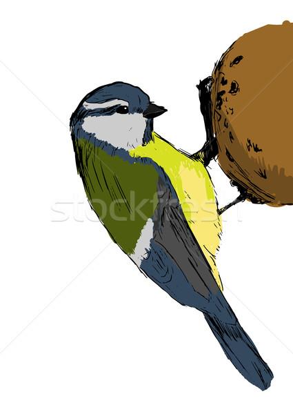 эскиз Тит птица белый прибыль на акцию лес Сток-фото © blotty
