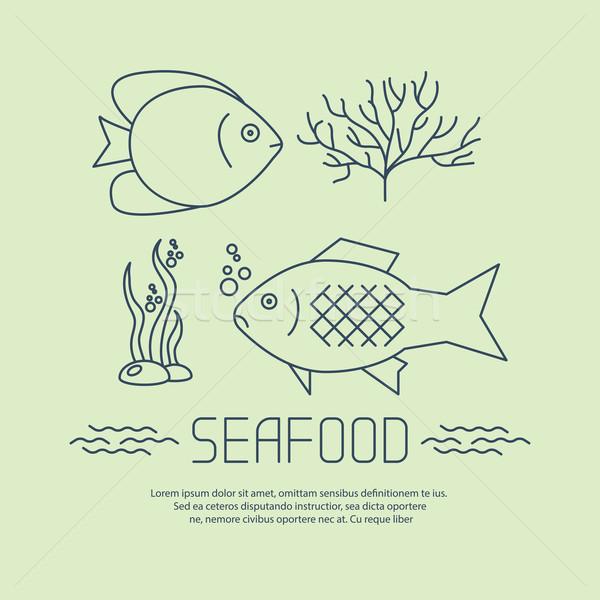 Tengeri hal ikon hínár vektor tengerpart víz Stock fotó © blotty