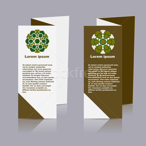 вектора брошюра макет дизайн шаблона eps10 иллюстрация Сток-фото © blotty