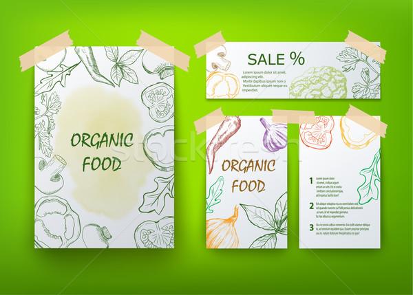 Organik gıda broşür dizayn yaprak yaz yeşil Stok fotoğraf © blotty