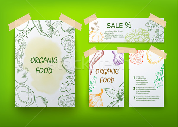 Alimentos orgánicos folleto diseno hoja verano verde Foto stock © blotty