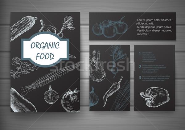 Bioélelmiszer brosúra terv levél nyár zöld Stock fotó © blotty