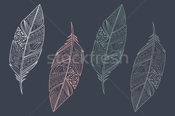 Collection of vintage tribal ethnic hand drawn colorful feathers, vector illustration Stock photo © BlueLela