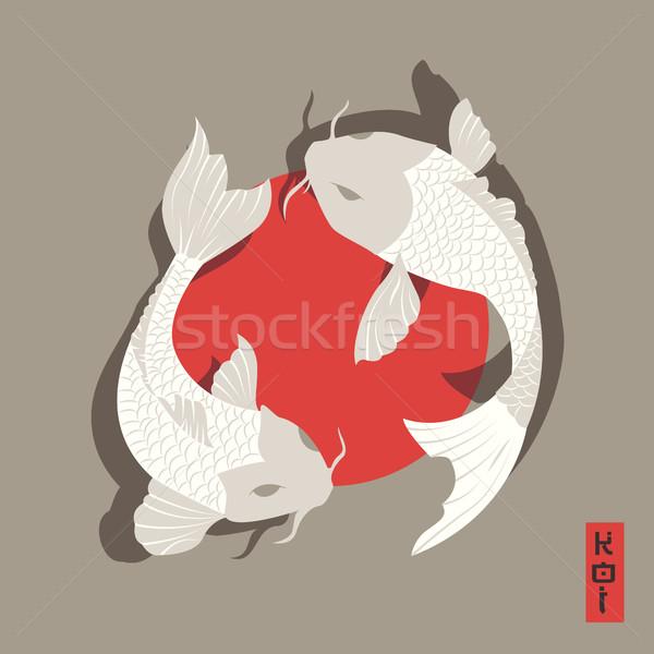 2 鯉 ニシキゴイ 魚 スイミング 周りに ストックフォト © BlueLela