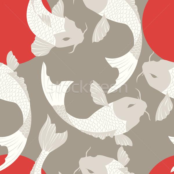 Carpa koi peces sol tradicional Foto stock © BlueLela