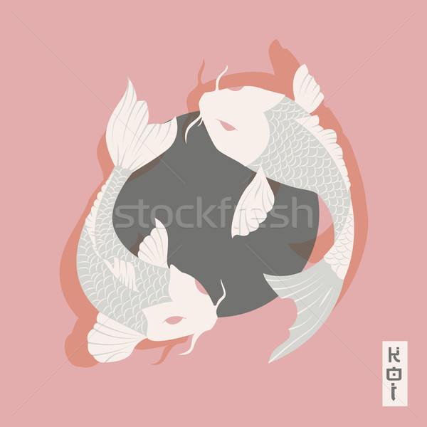 Twee karper koi vis zwemmen rond Stockfoto © BlueLela