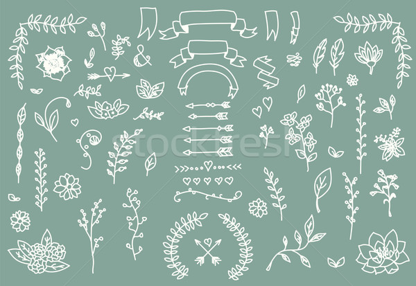 Stock photo: Hand drawn vintage arrows, feathers, dividers and floral elements
