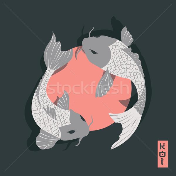 Kettő ponty koi hal úszik körül Stock fotó © BlueLela