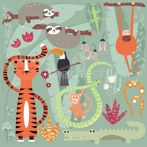 Collection of cute rain forest animals, tiger, snake, sloth, monkey Stock photo © BlueLela