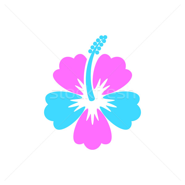Hibiscus flower icon Stock photo © blumer1979