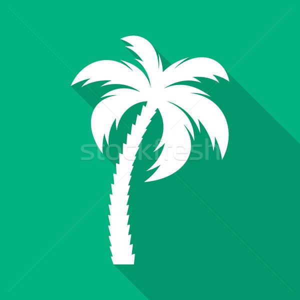 Сток-фото: белый · вектора · пальма · икона · зеленый · дерево
