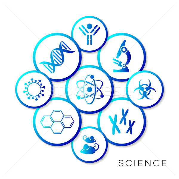 Modern blue vector science infographic buttons Stock photo © blumer1979