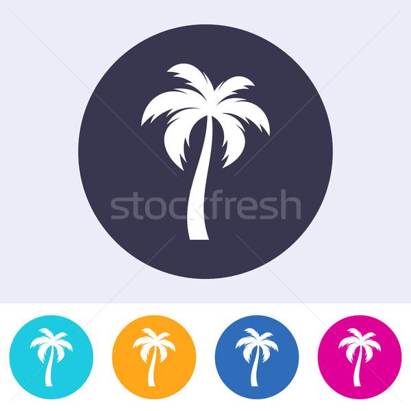 Stock photo: Vector single palm tree icon
