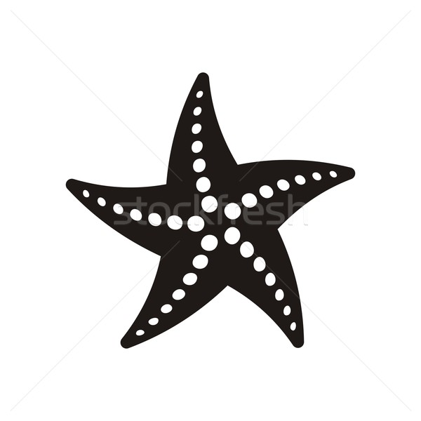 Starfish Stock photo © blumer1979