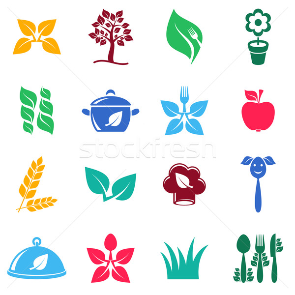 Vegetariano alimentos orgánicos iconos colorido vector Foto stock © blumer1979