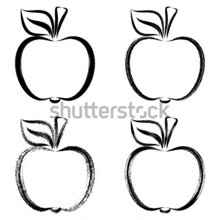 Zwarte vector appels schetst illustraties Stockfoto © blumer1979