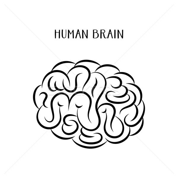 抽象的な 人間の脳 アイコン 黒 背景 にログイン ストックフォト © blumer1979
