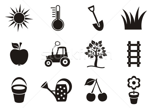 Garden icons Stock photo © blumer1979