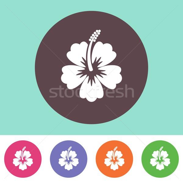 Vektör ebegümeci siluet ikon çiçek renkli Stok fotoğraf © blumer1979