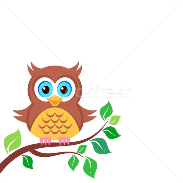 Owl on the branch Stock photo © blumer1979