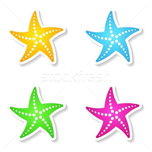 Starfishes Stock photo © blumer1979