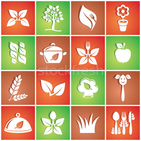 Vegetarian icons Stock photo © blumer1979