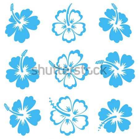 Hibiskus · Silhouette · Symbole · blau · Gradienten · Vektor ...