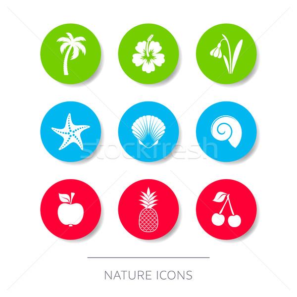 Beyaz doğa simgeler toplama düğmeler minimalist Stok fotoğraf © blumer1979