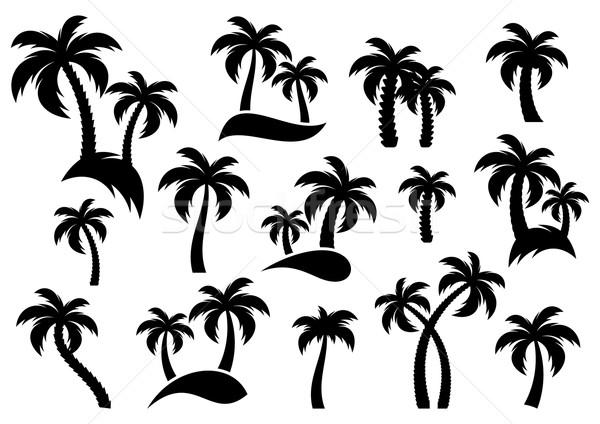 Сток-фото: вектора · пальма · силуэта · иконки · белый · фон