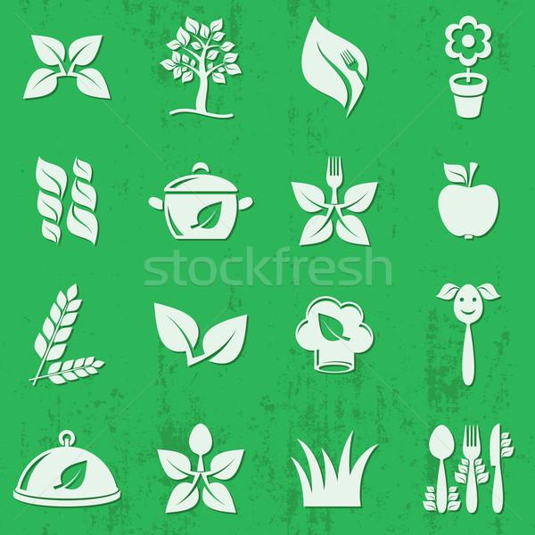 Vector vegetariano alimentos orgánicos iconos aislado Foto stock © blumer1979