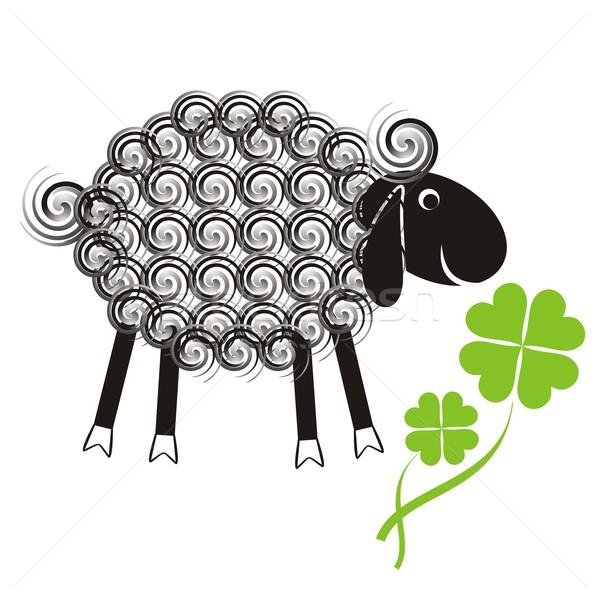Little cute sheep Stock photo © blumer1979