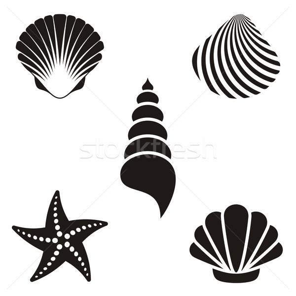 Mer obus noir starfish Photo stock © blumer1979