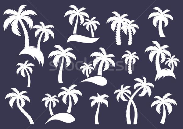 Pálmafa sziluett ikonok fehér vektor gyűjtemény Stock fotó © blumer1979