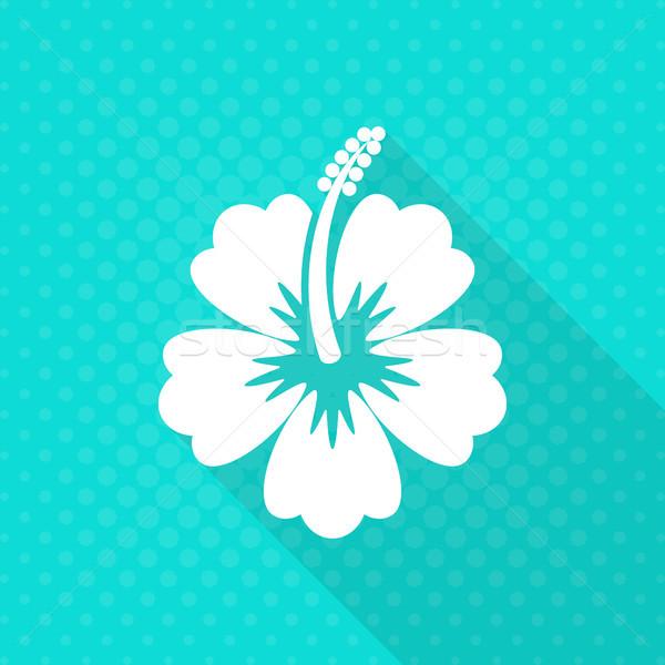 Witte vector hibiscus bloem icon turkoois Stockfoto © blumer1979